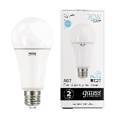 Лампа Gauss LED Elementary A67 30W E27 6500K