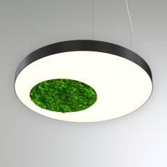 Светодиодный светильник Круг с отверстием и со мхом RVE20085