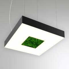 Светодиодный светильник Квадрат с отверстием и со мхом RVE20086